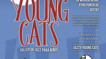 youngcats-e1444475578406