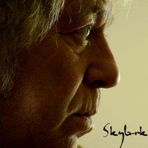 01-portada-skylark-paul-stocker-458x458-copia